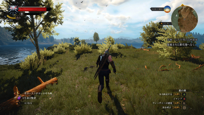 the-witcher-3-15122302