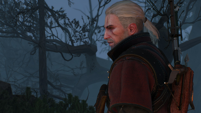 the-witcher-3-15122901
