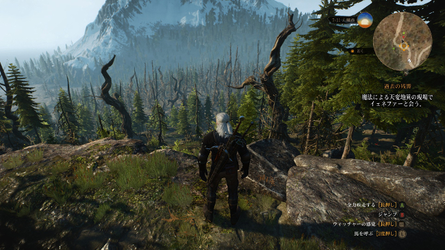 the-witcher-3-15122902
