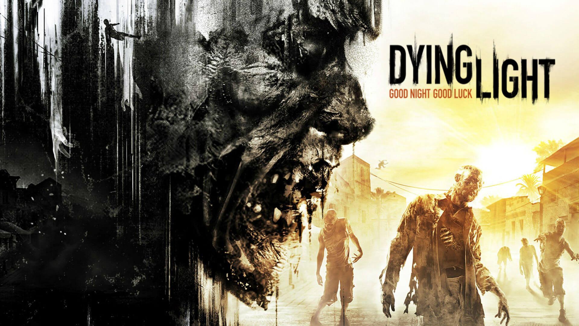 Dying Lightのボックスアート。